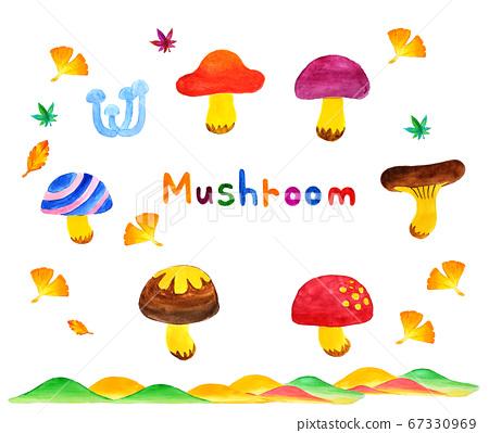 秋天的蘑菇的水彩插圖 67330969