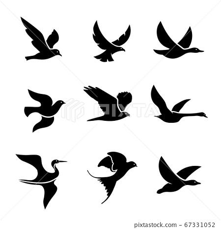 set of flying bird logo vector concept, creative Flying Bird Logo design vector template 67331052