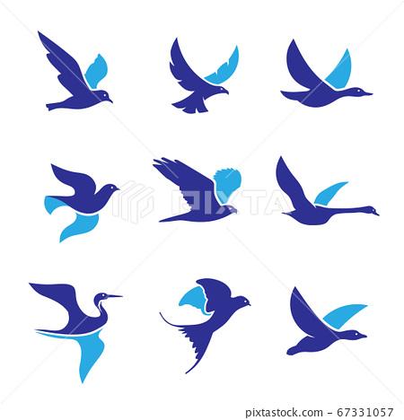 set of flying bird logo vector concept, creative Flying Bird Logo design vector template 67331057