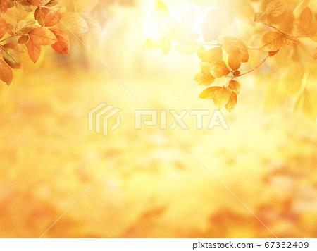 秋天的圖像素材 67332409
