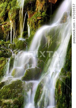삼척 무건리 이끼계곡,  67339557
