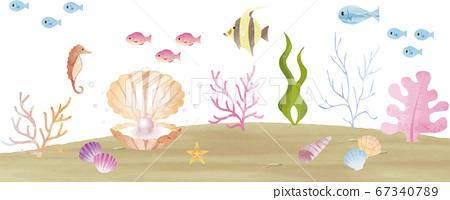 夏天海熱帶熱帶水彩插畫背景素材 67340789