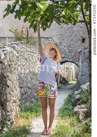 Beautiful blonde young female traveler wearing straw sun hat enjoying summer on Mediterranean cost, picking fruits under a fig tree with lavander flowers and traditional old stone house in background 67341030
