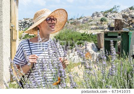 Beautiful blonde young female traveler wearing straw sun hat enjoying summer on Mediterranean cost strolling among lavander flowers on traditional costal village garden 67341035