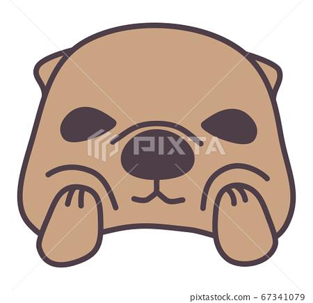 sea otter, pretty, cute 67341079