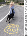 Young attractive woman wearing striped summer dress and straw hat standing on an endless straight empty road in the middle of nowhere on the Route 66 road and feeding black sheep. 67341302