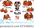 一組各種螃蟹的手繪插圖 67348691