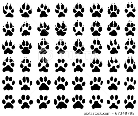 Black print of dogs and cats  paws on white background 67349798