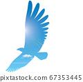 飛行與飛躍的形象 67353445