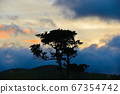 Clouds and trees at sunset 67354742