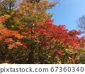 가을 풍경  67360340