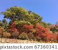 가을 풍경  67360341