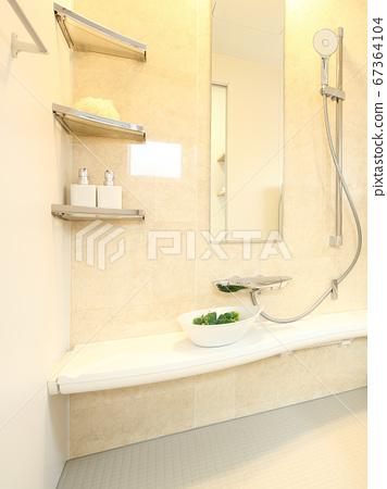 A beautiful unit bath of model house 67364104