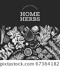 Culinary herbs banner template. Hand drawn vintage 67364182