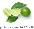 Limes With Leaves Isolated On White Background 67373796