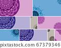 Beautiful colour mandala background 67379346