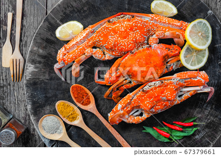 jumbo crab and spices herb on dark background 67379661