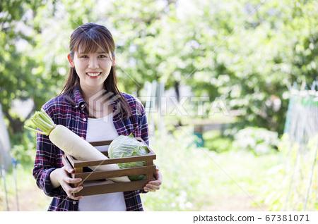 蔬菜在田間的年輕女子 67381071
