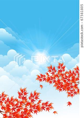 秋叶槭树秋天背景 67381805