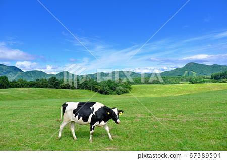 Asama Kogen Farm Ranch Beef 67389504