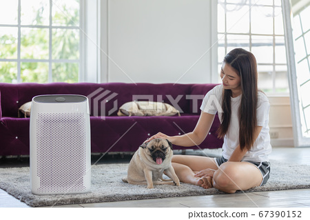 Woman playing with Dog Pug Breed and Air purifier in cozy white living room for filter and cleaning removing dust PM2.5 HEPA in home,for fresh air and healthy life,Air Pollution Concept 67390152