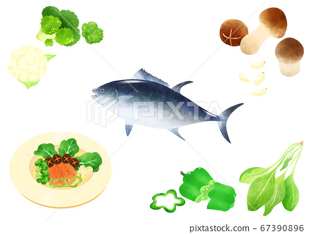 Ingredients to make Korean food illustration 010 67390896