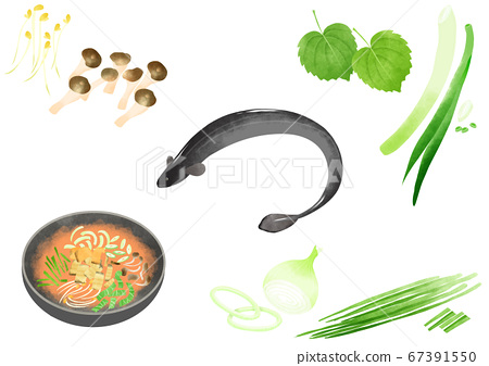 Ingredients to make Korean food illustration 009 67391550