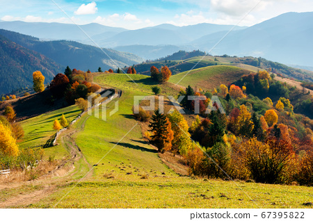 mountainous rural landscape in autumn. fields on 67395822
