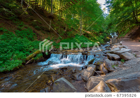 mountain river in the forest. fresh water stream 67395826