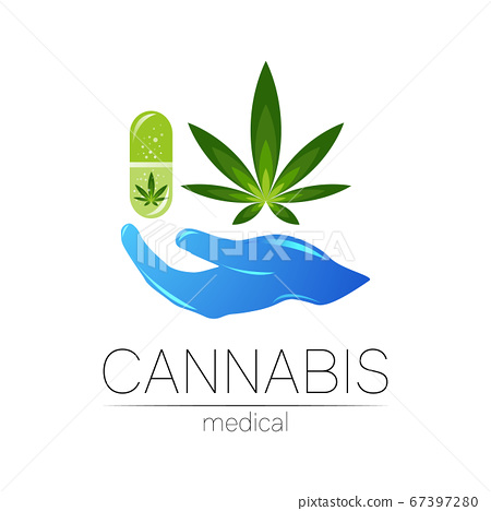 Cannabis in the tablet pill capsule with human hand vector logotype for medicine and doctor. Medical marijuana symbol. Pharmaceuticals with plant and leaf for health. Concept sign of green herb. 67397280