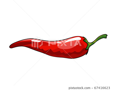 Hand drawn chili pepper. Super hot red chilli pepper. Red chilli pepper on white background. Natural healthy food. Spicy ingredient 67416623
