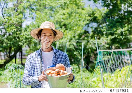 양파를 수확하는 남자 67417931