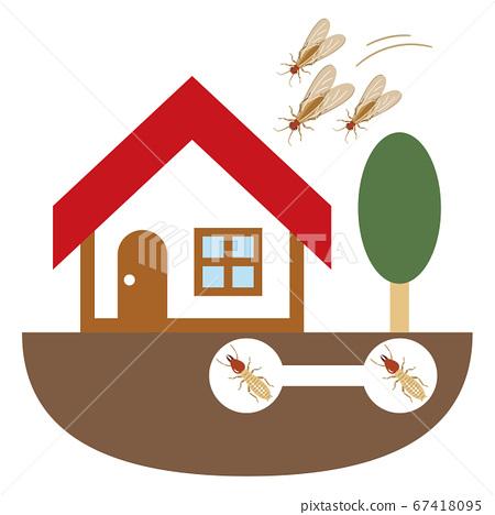 흰개미에 침입 한 가정의 일러스트레이션 67418095