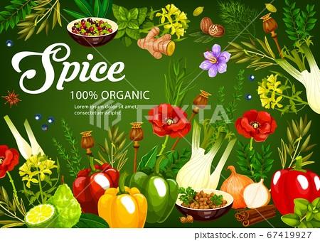 Herbs, spices, seasonings vegetables, condiments 67419927