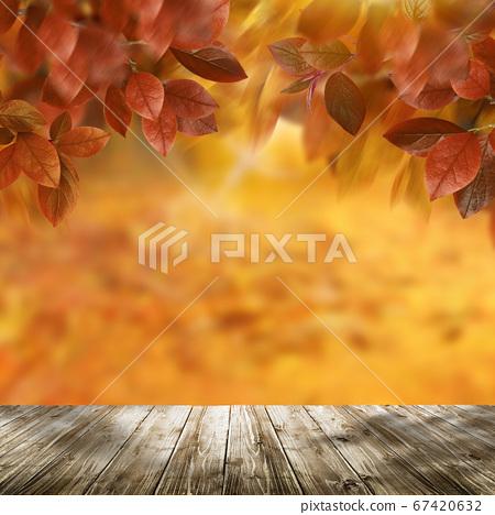가을 이미지 67420632