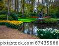 Wonderful park decorated with colorful tulips and spring flowers, Netherlands 67435966