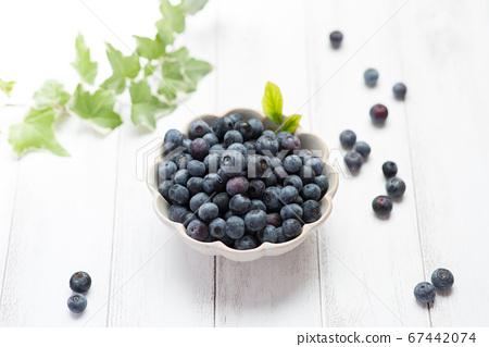 新鮮的藍莓 67442074