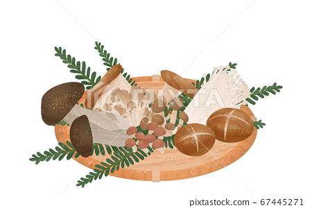 蘑菇採摘,秋天的味道蘑菇的插圖 67445271