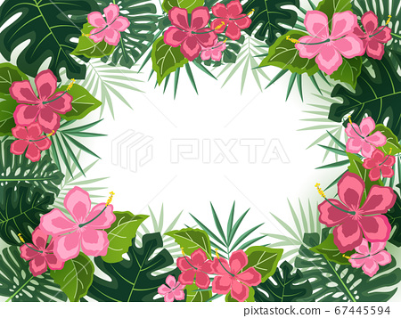 Background with tropical flowers 67445594