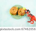 Vegan vegetable burgers with spelt buns 67462056
