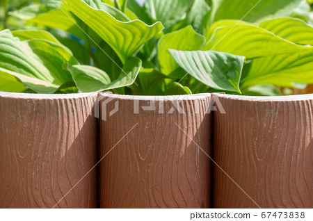 Brown decorative plastic garden fence for flowerbed. 67473838