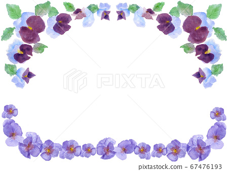 Watercolor pansy frame illustration frame 67476193