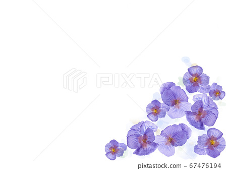 Pansy frame border illustration painted by watercolor 67476194