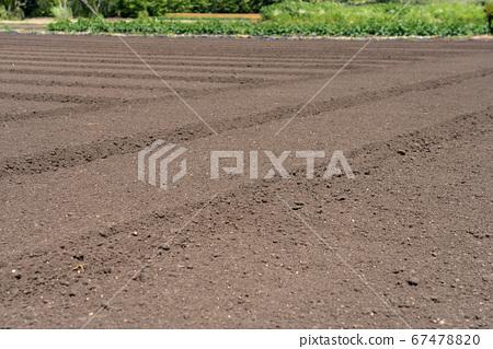 耕地和耕種 67478820