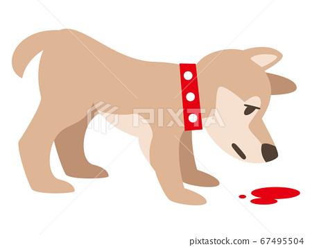 狗聞血 67495504