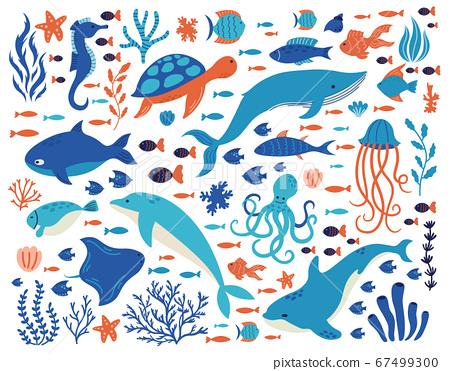 Doodle underwater animals. Ocean creatures, hand drawn marine life, dolphin, whale, turtle, octopus, corals, sea plants vector illustration set 67499300