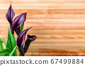 Burgundy calla lilies on background of wooden 67499884