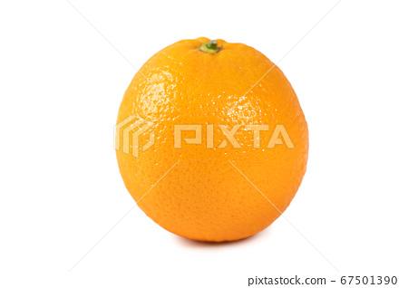 甜橙 柳橙 柳丁 去背 裁剪路徑 orange isolated オレンジ 切り抜き 67501390