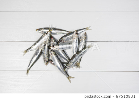 Sardines on a white table 67510931
