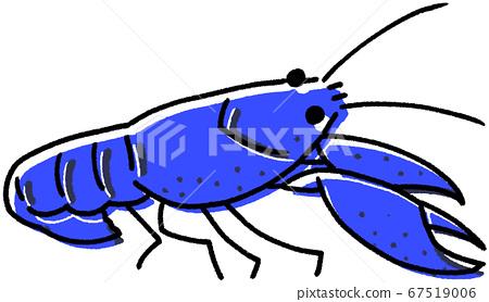 crawfish, crayfish, red swamp crayfish 67519006